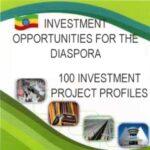 Ethiopia_diasporaInvestment